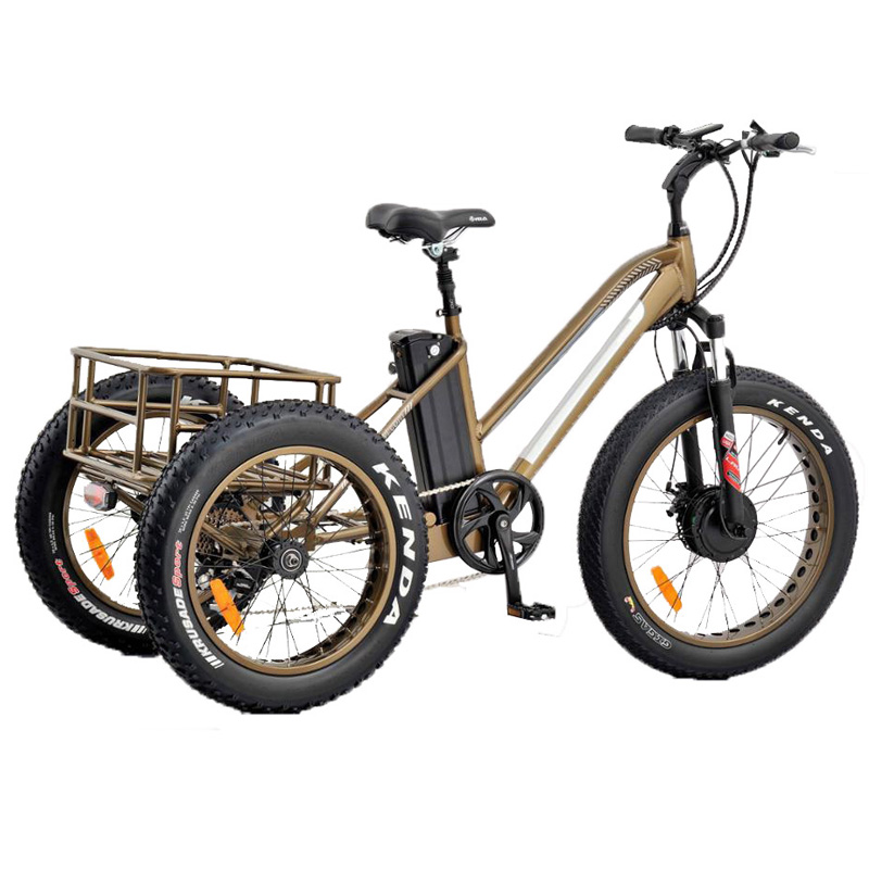 Basket  tricycle Ebike ET-007
