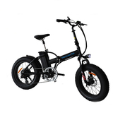 Folding Ebike TDN01Z-FAT