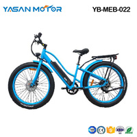 YB-MEB-022(Mountain E Bike)