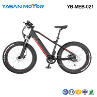Beach Electric Mountain Bike(YB-MEB-021)