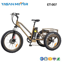 "ET-007(24""*4.0 Fat Tire E Tricycle)"