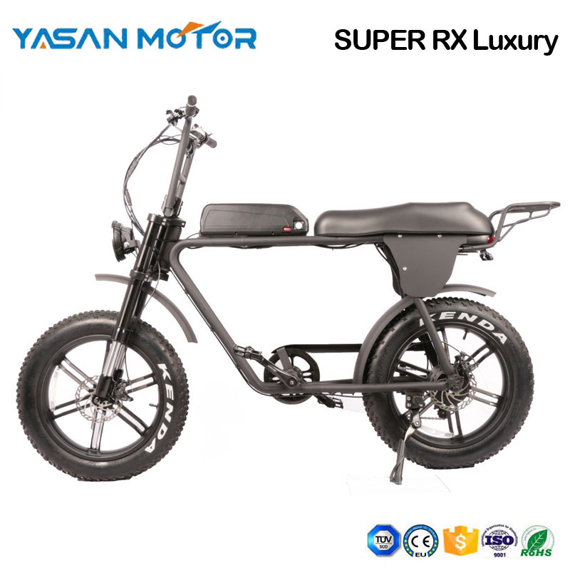 Dual Motor Electric Mountain Bike(SUPER RX Luxury)