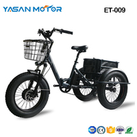 "ET-009(20"" Fat Tire Folding E Tricycle)"