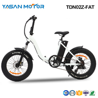 "TDN02Z-FAT(20"" Fat Folding E Bike)"