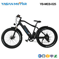 YB-MEB-025(Mountain E Bike)