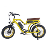 300W 36V electric bike